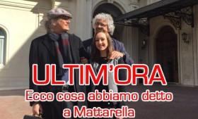 Grillo da Mattarella