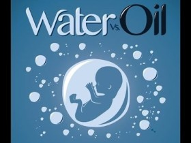 Water vs Oil #ACQUA contro #PETROLIO – Bruxelles 04.03.2015