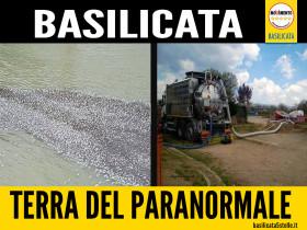 basentello