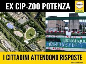 cip zoo